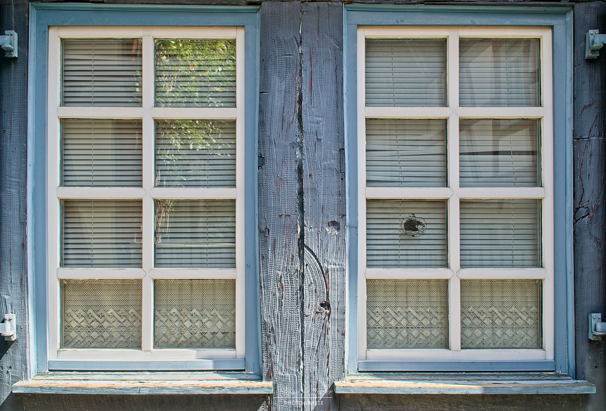 Fensterfront in Höchst