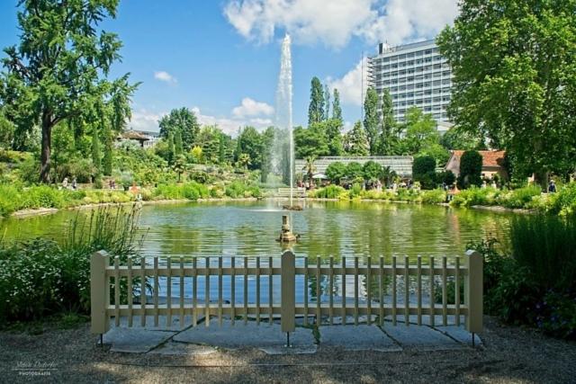 Wasserfontäne im Schloßgarten