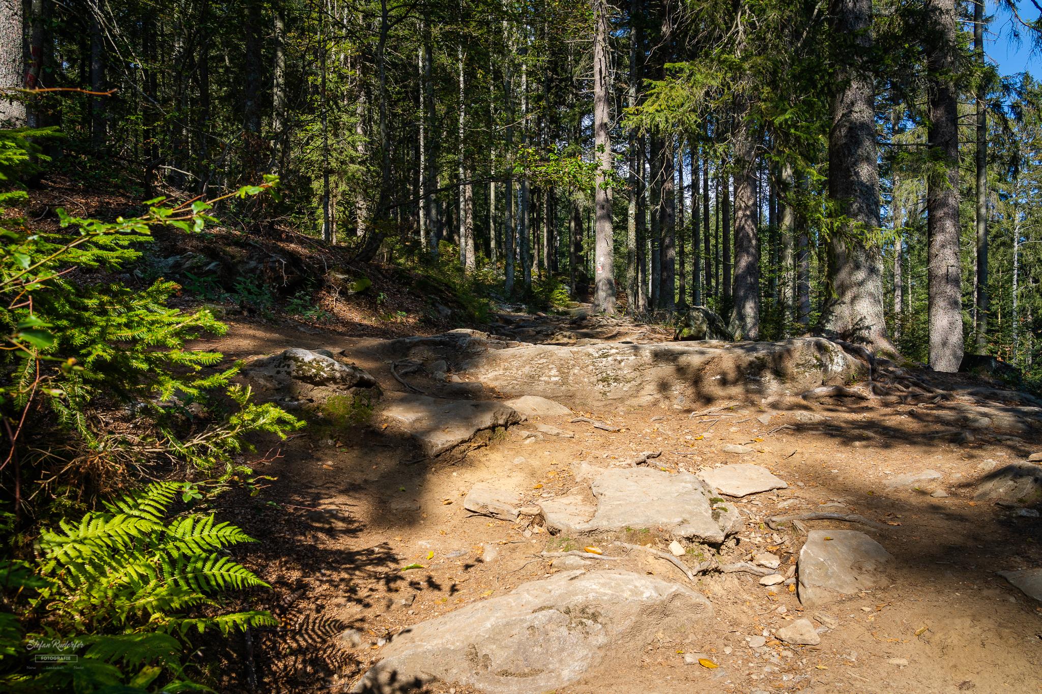 Weg Richtung Gipfel
